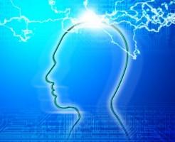 自我の刺激を排除すれば、悟りを開くことができる